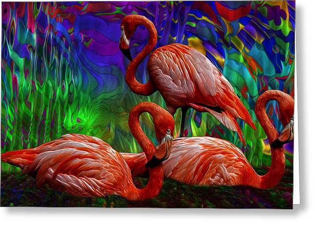 Swimmers Greeting Cards - Flamingo Trio II Greeting Card by Jack Zulli