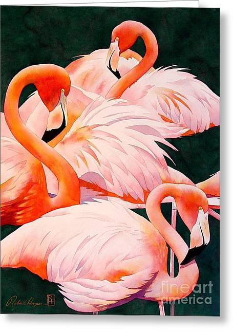 Flamingos Greeting Card by Robert Hooper