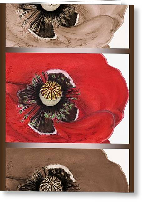 Burgundy Pastels Greeting Cards - Flanders Poppy Triptych Greeting Card by J McCombie