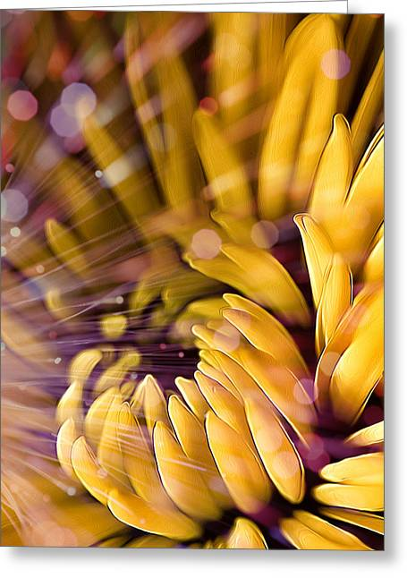 Fiber Optic Greeting Cards - Flashed Yellow Petals Greeting Card by Bill Tiepelman