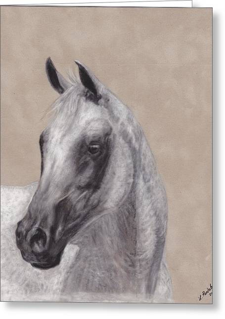 Dressage Pastels Greeting Cards - Flea Bitten Greeting Card by Loreen Pantaleone