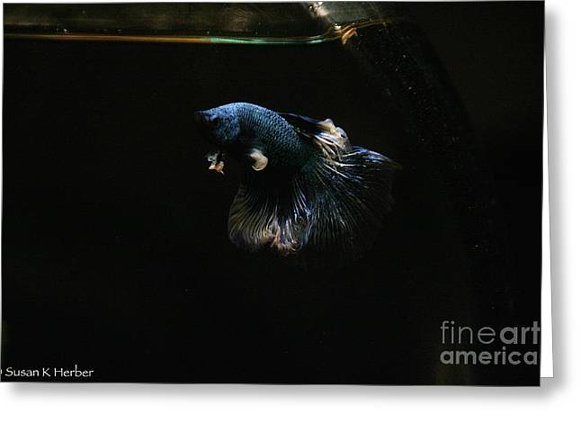 Betta Greeting Cards - Fleabag  Greeting Card by Susan Herber