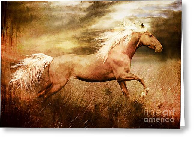 Equine Prints Greeting Cards - Fleet Greeting Card by Shanina Conway