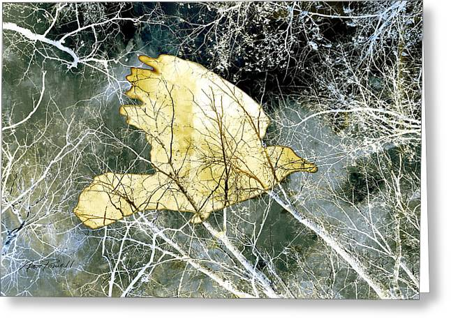 Manipulated Photography Greeting Cards - Flight Greeting Card by Ann Powell