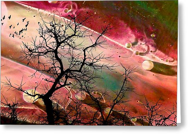 Flight From Mars Greeting Card by Jan Amiss Photography