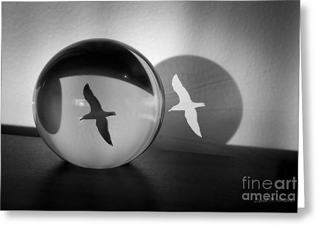 Surrealistic Images Greeting Cards - Flight of Fancy Greeting Card by Dave Gordon