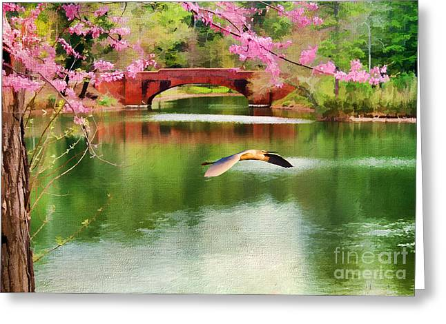 Red Bud Trees Greeting Cards - Flight of the Egret Greeting Card by Darren Fisher