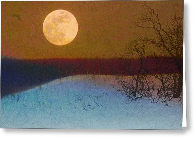 Texture Snow Scapes Greeting Cards - Flight Of The Moon Doves Greeting Card by R christopher Vest