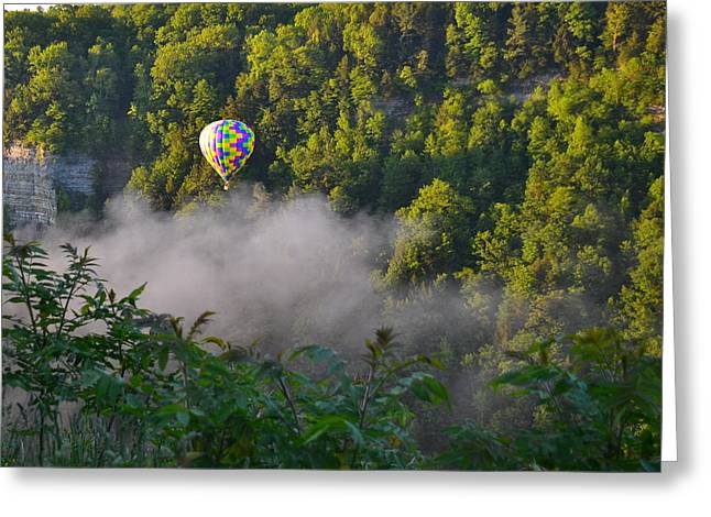 Balloon Pyrography Greeting Cards - Float Among the Clouds Greeting Card by Larry Heins