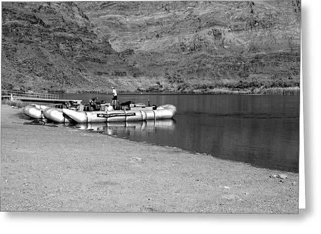 Canyon Ferry Lake Greeting Cards - Float Your Boat bw Greeting Card by Elizabeth Sullivan