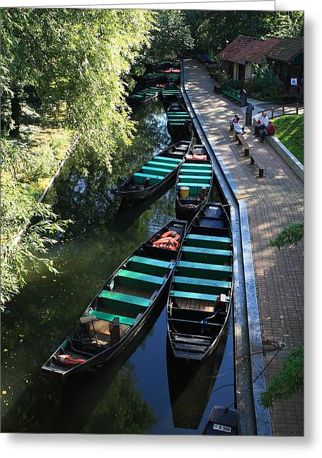 River Of Life Greeting Cards - Floating Grardens Of Amiens Greeting Card by Aidan Moran