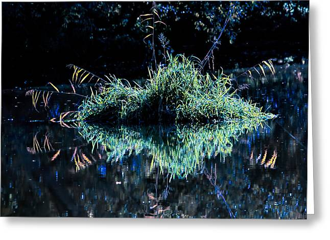 Reflection In Water Greeting Cards - Floating Island Greeting Card by Leif Sohlman