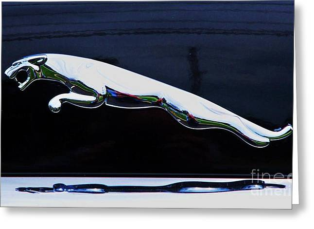Owner Greeting Cards - Floating Jaguar Greeting Card by Marcus Dagan