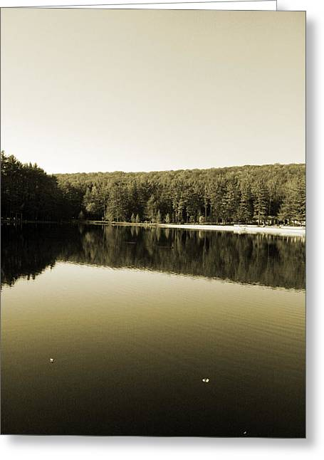 Meaghan Troup Greeting Cards - Floating on Glass III Greeting Card by Meaghan Troup