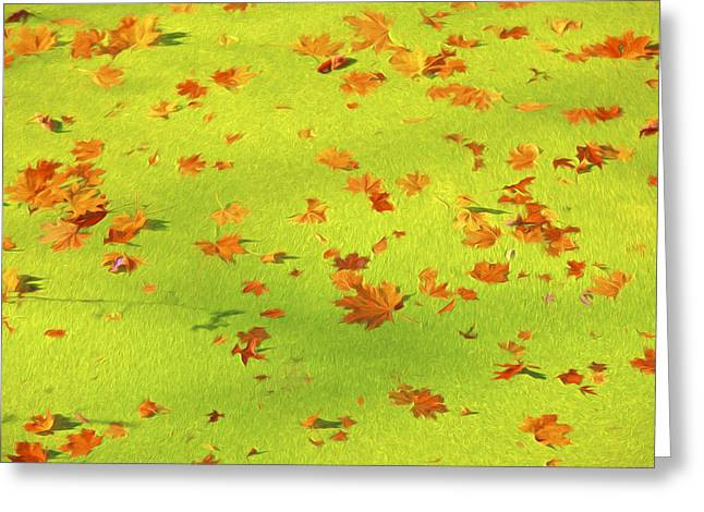 Abstract Water And Fall Leaves Greeting Cards - Floating Orange Leaves  Greeting Card by David Letts