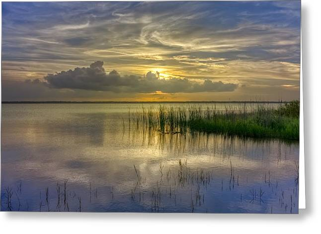Placid Blue Greeting Cards - Floating Over the Lake Greeting Card by Debra and Dave Vanderlaan