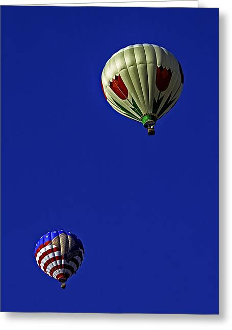 Floating Pair Greeting Card by Andy Crawford