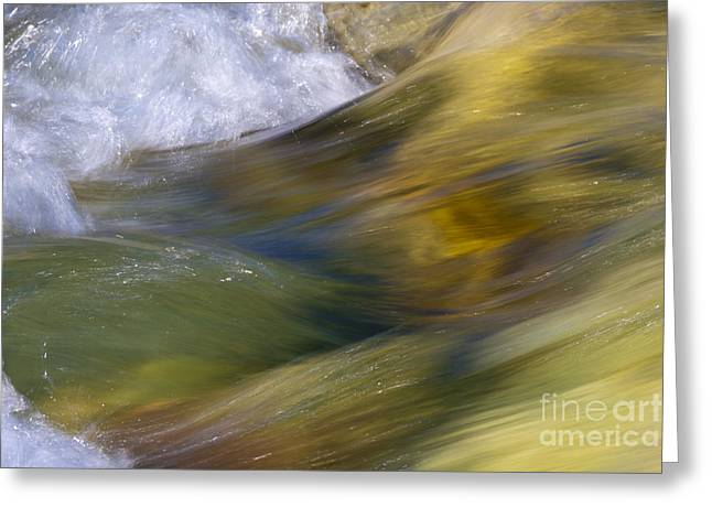 Wave Up Close Greeting Cards - Floating River Greeting Card by Heiko Koehrer-Wagner