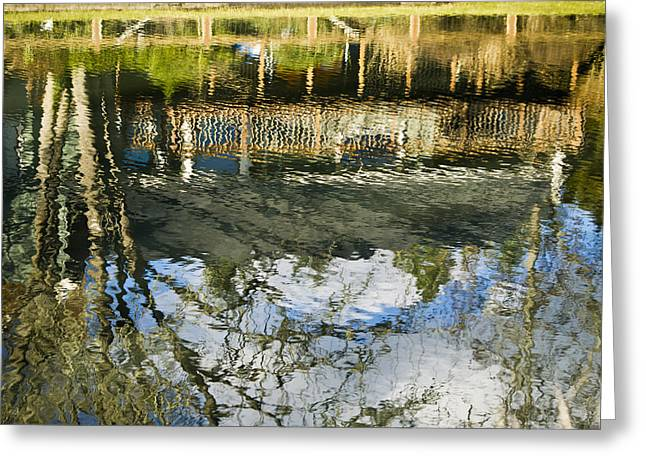 Blue Green Water Greeting Cards - Floating Stories - Fence and Trees Greeting Card by Melody Carr