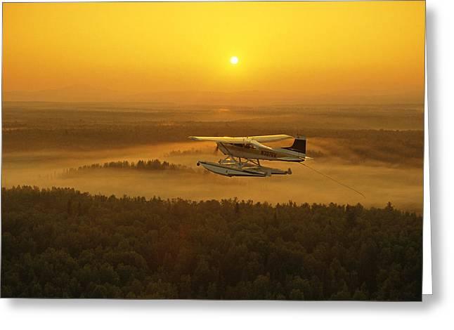 Matsu Greeting Cards - Floatplane Flying  Sunset Matanuska Greeting Card by Jeff Schultz