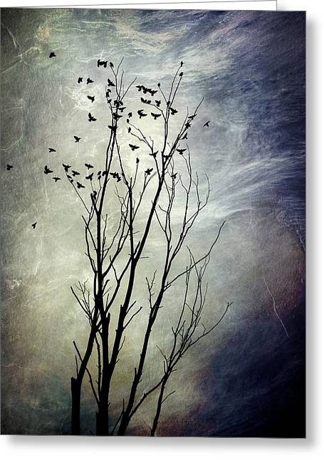 Christina Digital Art Greeting Cards - Flock Of Birds In Silhouette Greeting Card by Christina Rollo