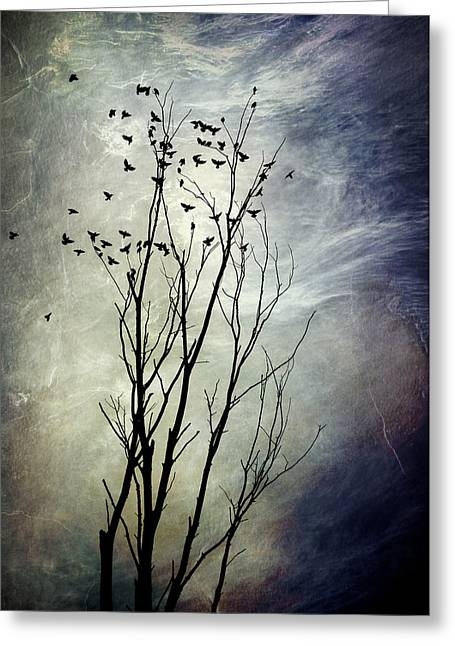 Christina Rollo Digital Greeting Cards - Flock Of Birds In Silhouette Greeting Card by Christina Rollo