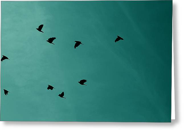 Digitalart Greeting Cards - Flock Of Birds Greeting Card by Martin Newman