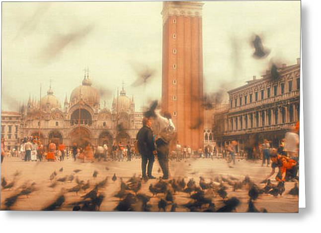 Flock Of Pigeons Flying, St. Marks Greeting Card by Panoramic Images