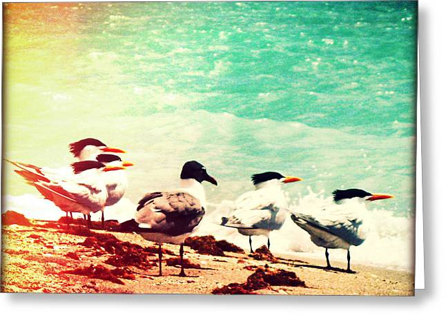 Retro Bird Greeting Cards - Flock of Terns Greeting Card by Chris Andruskiewicz