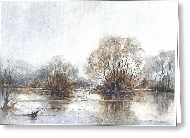 Floods Drawings Greeting Cards - Flood Plains Staffordshire Greeting Card by Ann Stringer-Paget