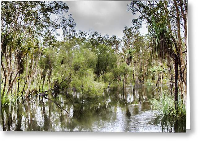 Floods Greeting Cards - Flood V1 Greeting Card by Douglas Barnard