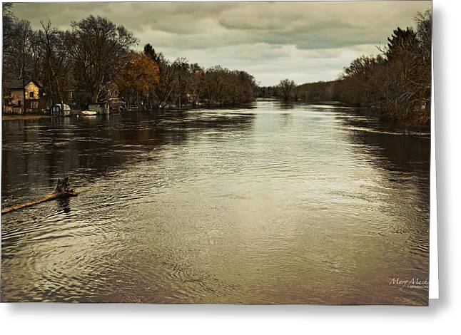 Floods Greeting Cards - Flood Waters Milwaukee River 2013 Greeting Card by Mary Machare