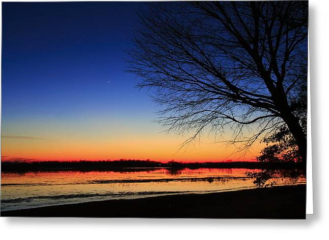 Southern Indiana Greeting Cards - Flooded River Bottom Greeting Card by Andrea Kappler