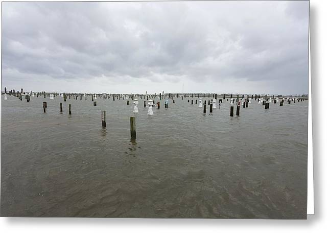Post Disaster Greeting Cards - Flooding due to Hurricane Isaac Greeting Card by Science Photo Library