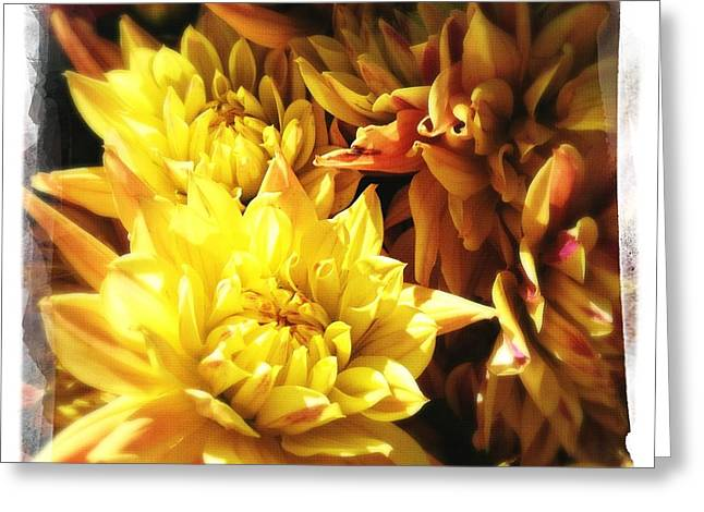Warm Tones Greeting Cards - Floral 1 Greeting Card by Penelope Moore