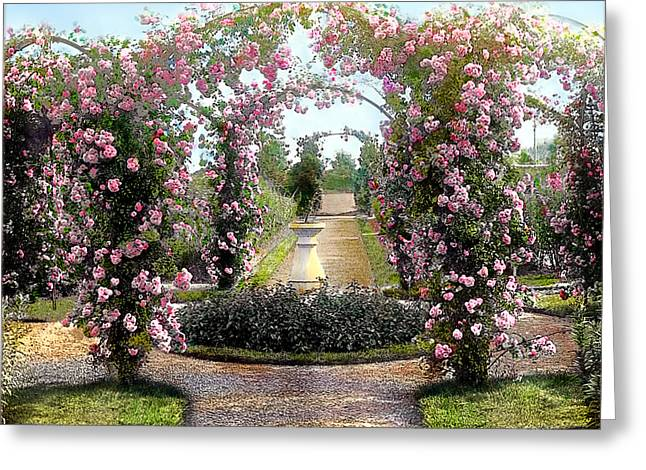 Floral Arch Greeting Card by Terry Reynoldson