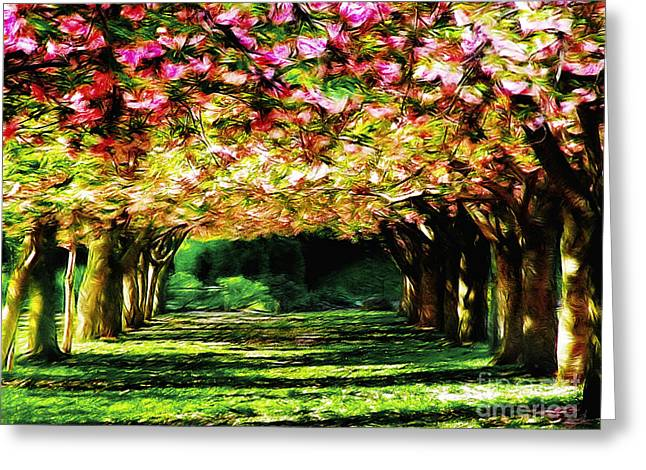 Floral Canopy Greeting Card by Nishanth Gopinathan