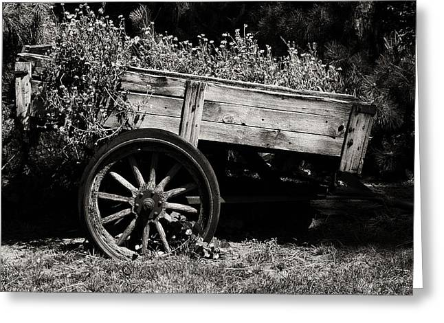 Wooden Wagons Greeting Cards - Floral Cart Greeting Card by Camille Lopez