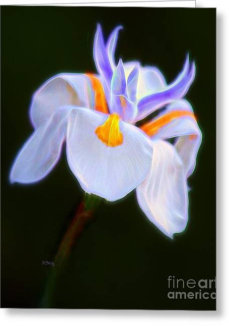 Enhanced Mixed Media Greeting Cards - Floral Delight Greeting Card by Patrick Witz
