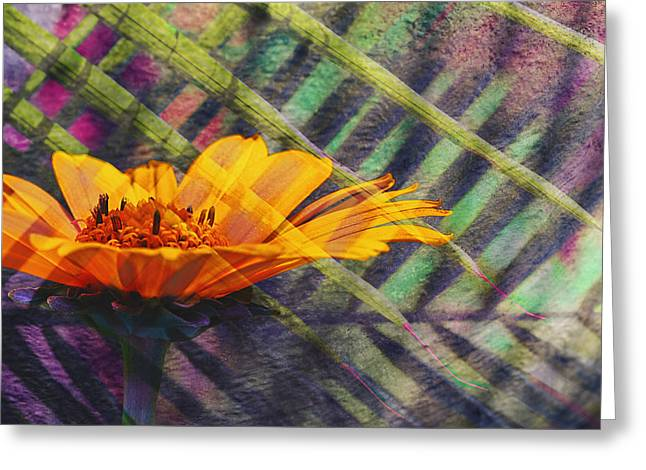 Floral Fantasy I Greeting Card by Barbara Smith