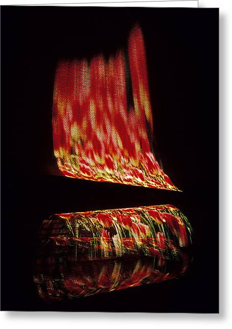 Netting Greeting Cards - Floral Fire Greeting Card by Doug Davidson