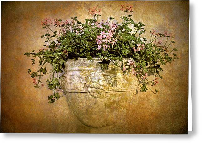 Stone Planter Greeting Cards - Floral Fresco Greeting Card by Jessica Jenney