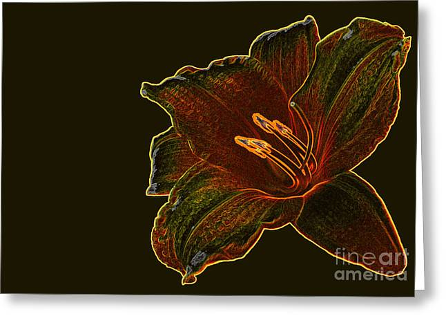 Day Lilly Greeting Cards - Floral Fusion Greeting Card by Dawn Beck