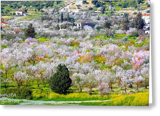 Star Valley Greeting Cards - Floral Landascape Greeting Card by Augusta Stylianou