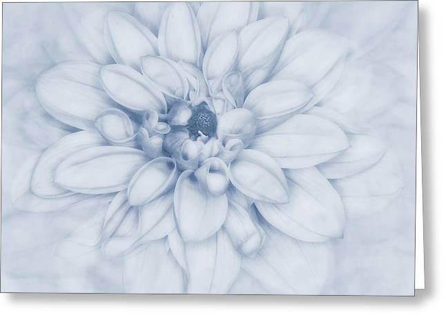 Saturated Greeting Cards - Floral Layers Cyanotype Greeting Card by John Edwards