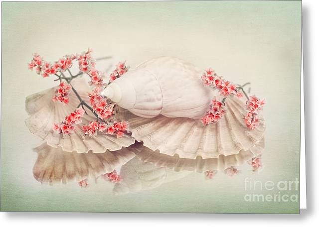 Sea Shell Art Greeting Cards - Floral-maritime Still Life Greeting Card by Viaina