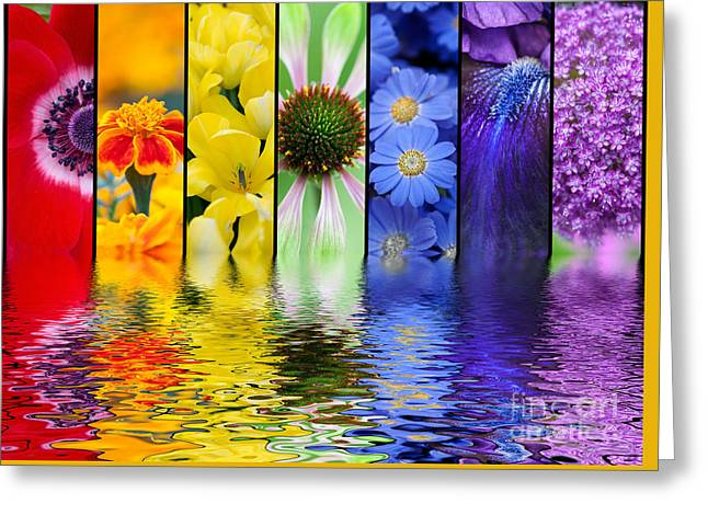 Rippled Water Greeting Cards - Floral Rainbow Greeting Card by Tim Gainey