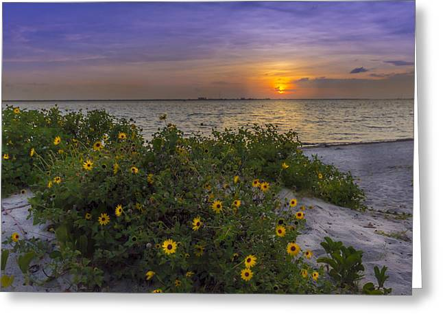 Thunder Cloud Greeting Cards - Floral Shore Greeting Card by Marvin Spates