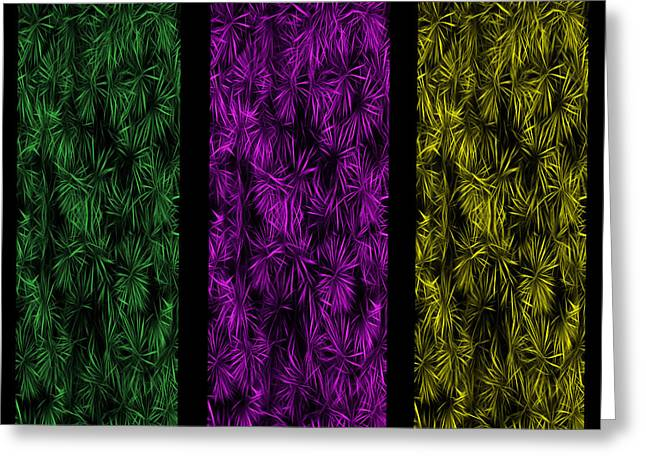 Cabin Wall Greeting Cards - Floral Trio Panes Abstract Greeting Card by David Dehner