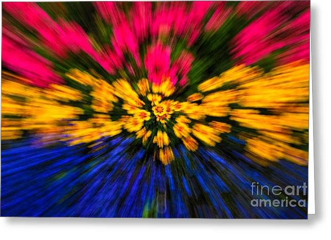 Floral Triple Zoom Greeting Card by Grace Grogan